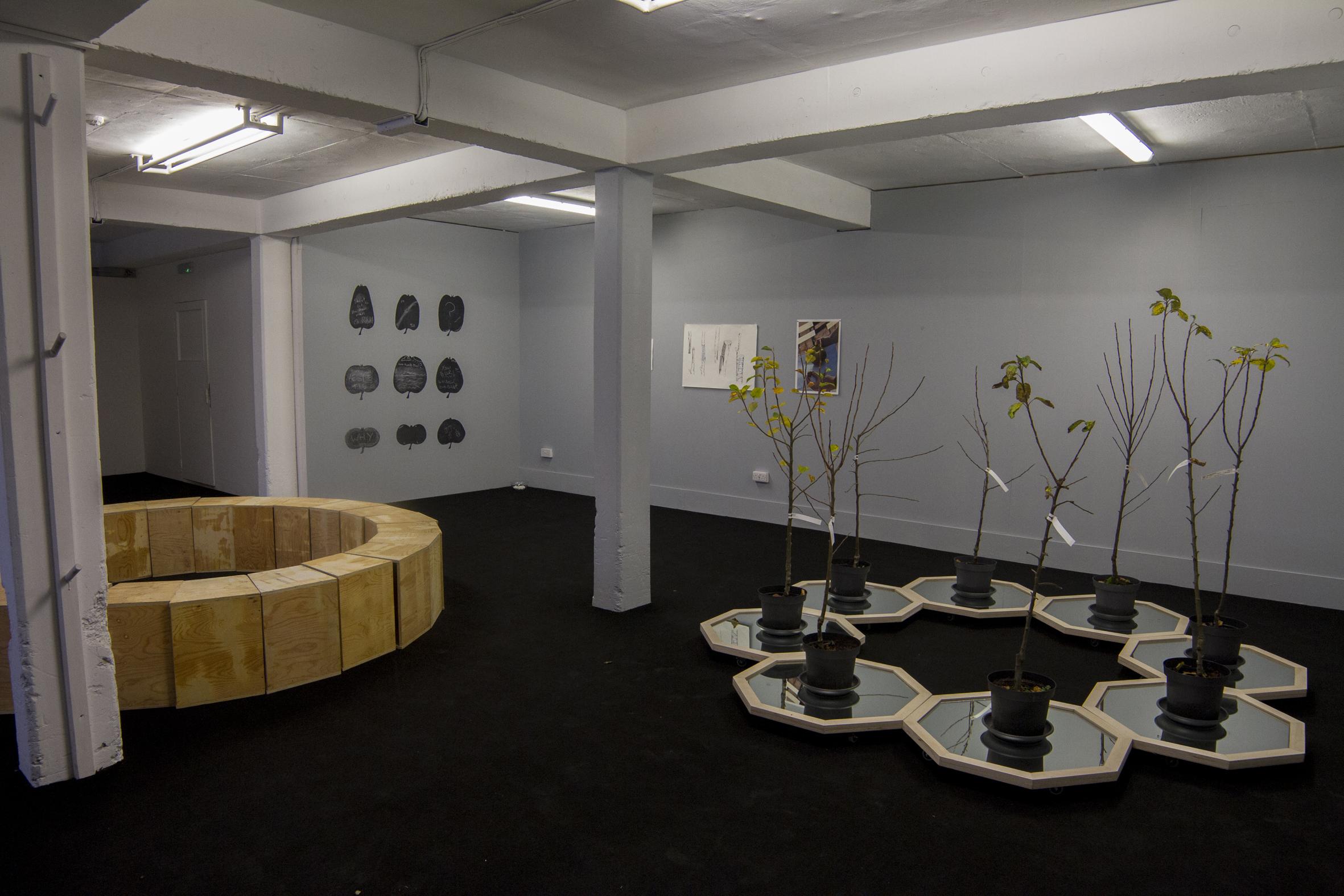 Seoidín O'Sullivan Orchard System, 2015 Apple trees, platforms & mirrors Dimensions variable