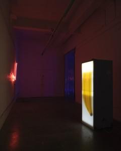 Installation view, Liliane Puthod